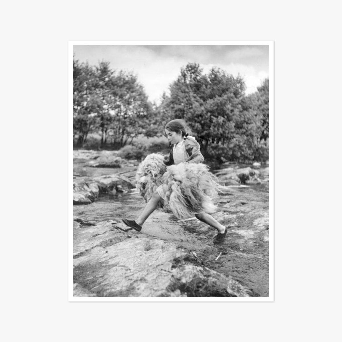 Tyne Fleece by Bert Hardy